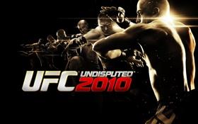 Картинка бойцы, 2010, UNDISPUNED, UFC