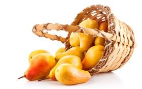 Картинка корзина, фрукты, груши