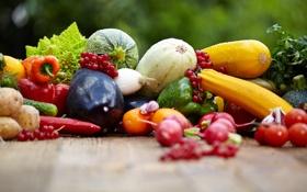 Обои лук, баклажаны, перец, фрукты, овощи, помидоры, смородина