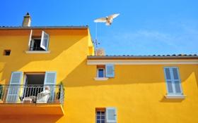 Обои небо, дом, птица, окна, голубь, балкон