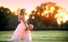 Картинка поле, свет, девочка