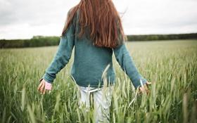Картинка поле, девушка, спина, рыжая