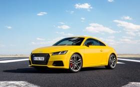 Картинка Audi, ауди, купе, желтая, TTS