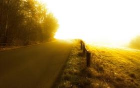 Картинка дорога, туман, поле, свет, забор, цвет