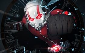 Обои шлем, супергерой, мститель, Человек-муравей, Paul Rudd, Ant-Man, Scott Lang