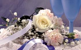 Обои цветы, бокал, роза, букет, лента, гвоздика