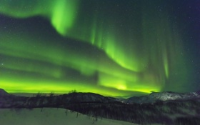 Обои зима, небо, звезды, снег, деревья, пейзаж, горы