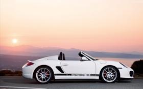 Картинка Porsche, spider, панорама, кабриолет, white car, boxter