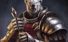 Обои оружие, медведь, воин, арт, броня, шрам, Guild Wars