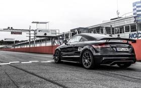 Обои Audi, HPerfomance, ауди, черная, купе, Black, Coupe