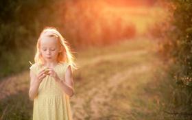 Обои свет, настроение, яблоко, девочка