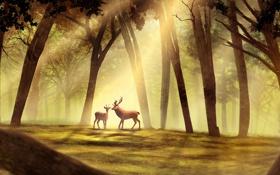 Обои лес, деревья, олень, арт, рога, косуля, солнечные лучи