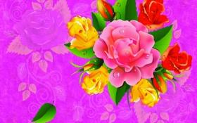 Обои роза, цветок, капли, букет, силуэт, лист, вектор