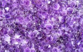 Обои фиолетовый, кристалы, crystals