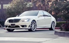 Картинка авто, белый, Mercedes Benz, мерседес, роскошь, S Class