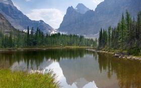 Картинка лес, горы, природа, озеро, Canada, Yoho National Park, Moor Lakes