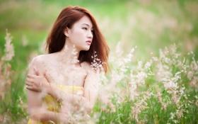 Картинка поле, лето, девушка, настроение, азиатка