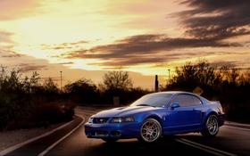 Обои солнце, закат, Mustang, Ford, мустанг, тачки, форд
