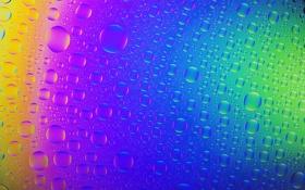 Обои пузырьки, свет, стекло, радуга, цвет