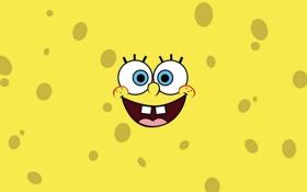 Обои взгляд, желтый, улыбка, мультсериал, SpongeBob SquarePants, Губка Боб Квадратные Штаны