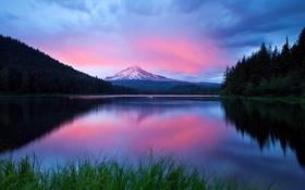 Обои облака, горизонт, небо, фото, лес, озеро, природа
