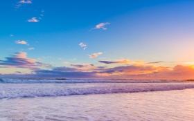 Картинка море, небо, облака, деревья, закат, природа, берег