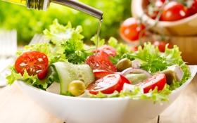 Обои салат, зелень, масло, огурцы, помидоры, тарелка, оливки