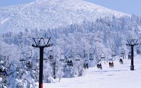 Обои зима, лес, снег, горы, люди, отдых, лыжи