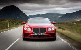 Обои Bentley, Continental, Speed, бентли, континенталь, 2015