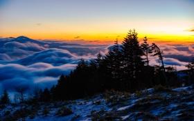 Обои небо, облака, деревья, пейзаж, гора, панорама