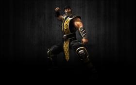 Обои темный фон, череп, скорпион, ниндзя, scorpion, mortal kombat, ninja
