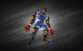 Картинка темный фон, бокс, Балрог, Balrog, боксер, уличный боец, Street Fighter
