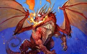 Обои огонь, дракон, рисунок, крылья, WoW, World of Warcraft, Hearthstone