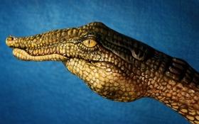 Обои креатив, обои, рука, крокодил, художник, пальцы, wallpapers