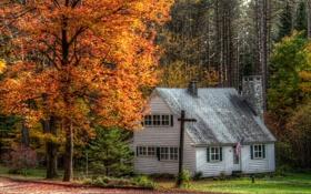 Картинка США, город, осень, деревья, фото, Marshfield, дом