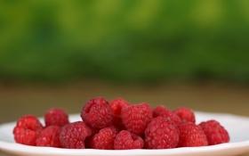 Картинка ягоды, малина, тарелка, plate, berries, raspberries