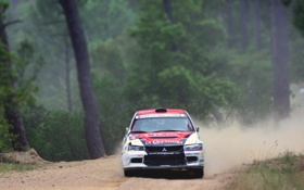 Обои Лес, Спорт, Гонка, Занос, Mitsubishi, Lancer, WRC