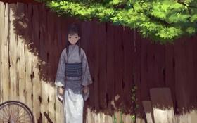 Картинка колесо, Девушка, кимоно, забор