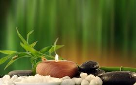 Обои свечи, бамбук, Spa, спа, bamboo, candles, морская соль