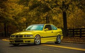 Обои Листья, BMW, E36, 3 series, oldschool, Дорога, Желтая