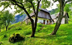 Обои облака, трава, небо, дом, Словения, деревья, bovec