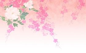 Обои фон, лепестки, цветы