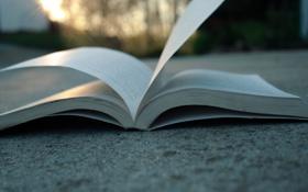 Картинка лист, фон, обои, книга, книжки, разное, страницы