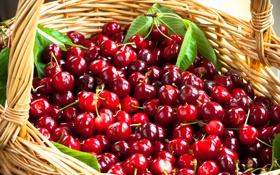 Обои корзина, фрукты, черешня, fruit, basket, cherries