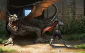 Обои дракон, здание, человек, арт, цепь, плащ, постройка