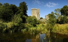 Картинка пруд, замок, ирландия