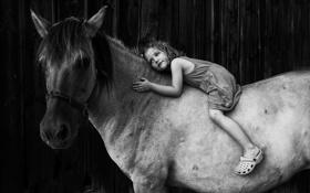Картинка фон, конь, девочка