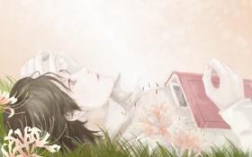 Обои трава, цветы, арт, лежит, книга, парень, isa