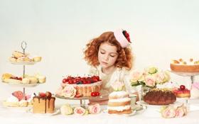 Обои цветы, ягоды, розы, клубника, девочка, рыжеволосая, пирожные