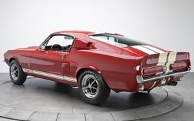 Картинка Mustang, Ford, Shelby, Форд, Мустанг, вид сзади, 1967